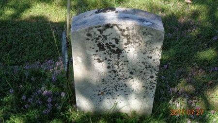 COLLINS, EDWARD - Marquette County, Michigan | EDWARD COLLINS - Michigan Gravestone Photos