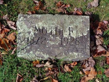 COLLINS, LILY - Marquette County, Michigan | LILY COLLINS - Michigan Gravestone Photos