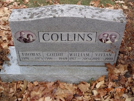 COLLINS, GOLDIE - Marquette County, Michigan | GOLDIE COLLINS - Michigan Gravestone Photos