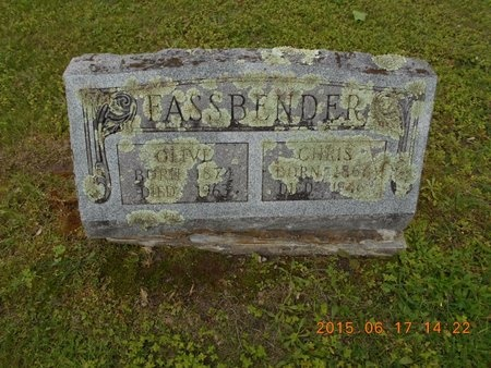 FASSBENDER, OLIVE - Marquette County, Michigan | OLIVE FASSBENDER - Michigan Gravestone Photos