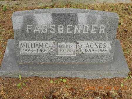 FASSBENDER, AGNES - Marquette County, Michigan   AGNES FASSBENDER - Michigan Gravestone Photos