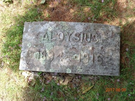 GUNVILLE, ALOYSIUS - Marquette County, Michigan | ALOYSIUS GUNVILLE - Michigan Gravestone Photos