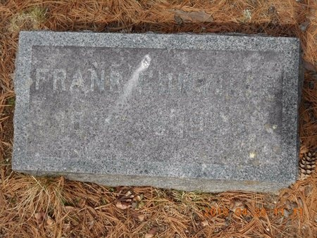 GUNVILLE, FRANK - Marquette County, Michigan | FRANK GUNVILLE - Michigan Gravestone Photos
