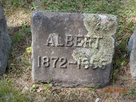 HANSEN, ALBERT - Marquette County, Michigan | ALBERT HANSEN - Michigan Gravestone Photos