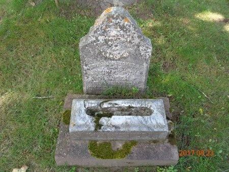 HANSEN, DORTHEA ANN - Marquette County, Michigan   DORTHEA ANN HANSEN - Michigan Gravestone Photos