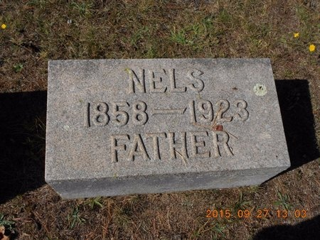 HANSON, NELS - Marquette County, Michigan | NELS HANSON - Michigan Gravestone Photos