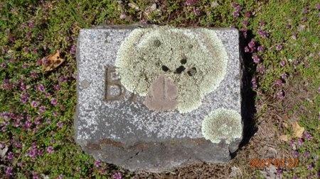 JOHNS, BABY - Marquette County, Michigan | BABY JOHNS - Michigan Gravestone Photos