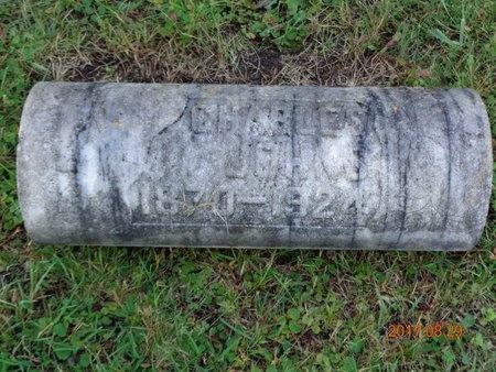 JOHNS, CHARLES - Marquette County, Michigan | CHARLES JOHNS - Michigan Gravestone Photos