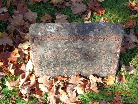 JOHNS, CATHERINE - Marquette County, Michigan | CATHERINE JOHNS - Michigan Gravestone Photos