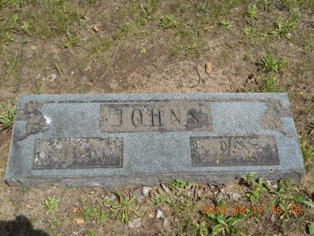 JOHNS, DELIA - Marquette County, Michigan | DELIA JOHNS - Michigan Gravestone Photos