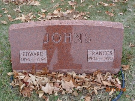 JOHNS, FRANCES - Marquette County, Michigan | FRANCES JOHNS - Michigan Gravestone Photos