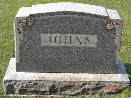 JOHNS, FAMILY - Marquette County, Michigan | FAMILY JOHNS - Michigan Gravestone Photos