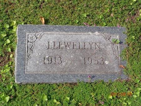 JOHNS, LLEWELLYN - Marquette County, Michigan | LLEWELLYN JOHNS - Michigan Gravestone Photos
