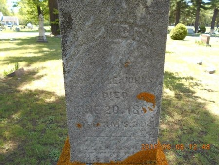 JOHNS, MAUD E. - Marquette County, Michigan | MAUD E. JOHNS - Michigan Gravestone Photos