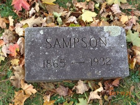 JOHNS, SAMPSON - Marquette County, Michigan | SAMPSON JOHNS - Michigan Gravestone Photos