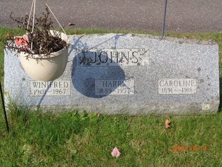JOHNS, CAROLINE - Marquette County, Michigan | CAROLINE JOHNS - Michigan Gravestone Photos