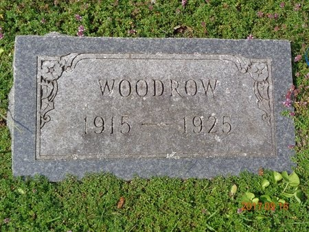 JOHNS, WOODROW - Marquette County, Michigan | WOODROW JOHNS - Michigan Gravestone Photos