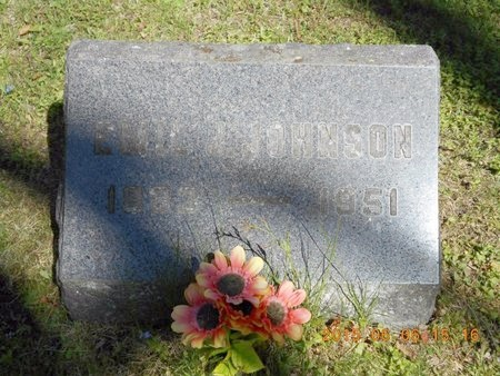 JOHNSON, EMIL J. - Marquette County, Michigan | EMIL J. JOHNSON - Michigan Gravestone Photos