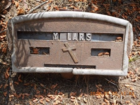 LARSON, MARY - Marquette County, Michigan | MARY LARSON - Michigan Gravestone Photos