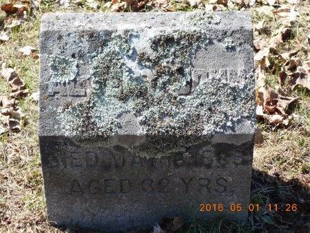 MAAS, ALBERT JOHN - Marquette County, Michigan | ALBERT JOHN MAAS - Michigan Gravestone Photos