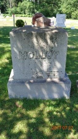 MOLLOY, FAMILY - Marquette County, Michigan | FAMILY MOLLOY - Michigan Gravestone Photos