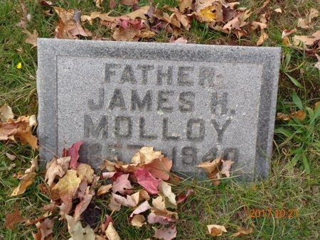 MOLLOY, JAMES H. - Marquette County, Michigan | JAMES H. MOLLOY - Michigan Gravestone Photos