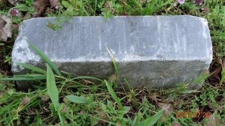 PEPIN, ROMEO - Marquette County, Michigan | ROMEO PEPIN - Michigan Gravestone Photos