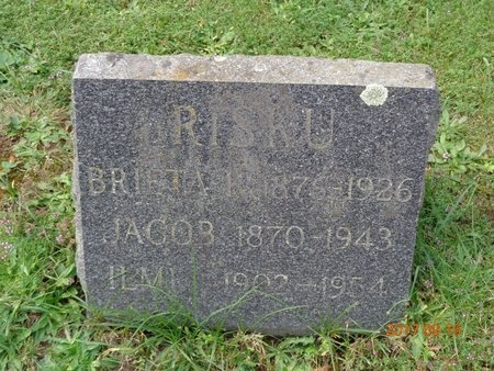 RISKU, ILMI - Marquette County, Michigan | ILMI RISKU - Michigan Gravestone Photos