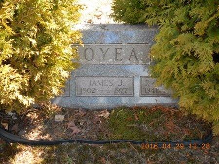 ROYEA, FAMILY - Marquette County, Michigan | FAMILY ROYEA - Michigan Gravestone Photos