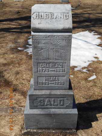 SALO, CHARLES - Marquette County, Michigan | CHARLES SALO - Michigan Gravestone Photos