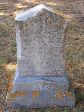 SALO, MAGGIE M. - Marquette County, Michigan   MAGGIE M. SALO - Michigan Gravestone Photos
