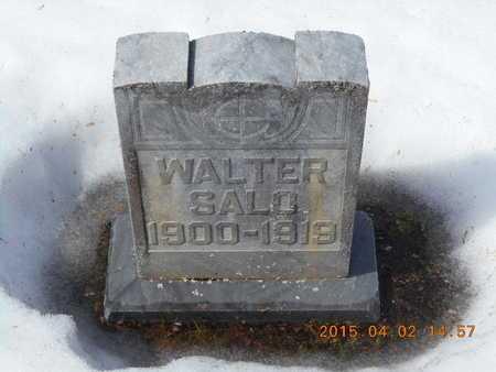SALO, WALTER - Marquette County, Michigan | WALTER SALO - Michigan Gravestone Photos