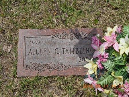 TAMBLING, AILEEN C. - Marquette County, Michigan   AILEEN C. TAMBLING - Michigan Gravestone Photos