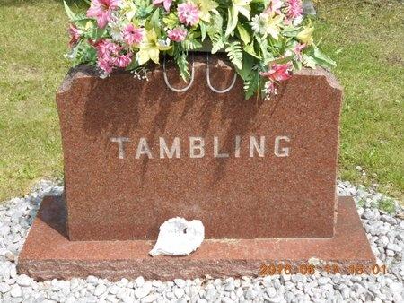 TAMBLING, FAMILY - Marquette County, Michigan | FAMILY TAMBLING - Michigan Gravestone Photos