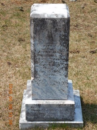 THOMAS, PETER - Marquette County, Michigan | PETER THOMAS - Michigan Gravestone Photos