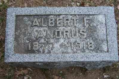 ANDRUS, ALBERT FRANKLIN - Mecosta County, Michigan | ALBERT FRANKLIN ANDRUS - Michigan Gravestone Photos
