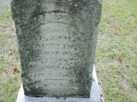 AUSTIN, JAMES - Mecosta County, Michigan | JAMES AUSTIN - Michigan Gravestone Photos