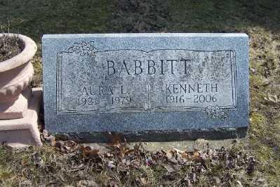 BABBITT, KENNETH W. - Mecosta County, Michigan | KENNETH W. BABBITT - Michigan Gravestone Photos
