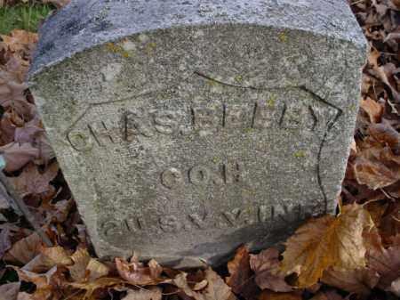 BELBY, CHARLES - Mecosta County, Michigan   CHARLES BELBY - Michigan Gravestone Photos