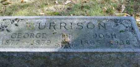 BURRISON, GEORGE - Mecosta County, Michigan | GEORGE BURRISON - Michigan Gravestone Photos