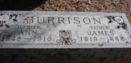 BENNEY BURRISON, ANN - Mecosta County, Michigan | ANN BENNEY BURRISON - Michigan Gravestone Photos