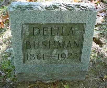BUSHMAN, DELILA - Mecosta County, Michigan | DELILA BUSHMAN - Michigan Gravestone Photos