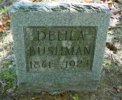 BUSHMAN, DELILA - Mecosta County, Michigan | DELILA BUSHMAN - Michigan Gravestone Photos