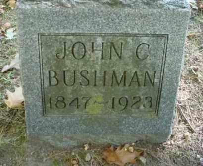 BUSHMAN, JOHN C - Mecosta County, Michigan   JOHN C BUSHMAN - Michigan Gravestone Photos