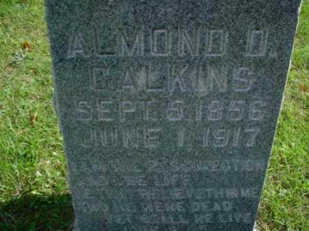 CALKINS, ALMOND D. - Mecosta County, Michigan | ALMOND D. CALKINS - Michigan Gravestone Photos