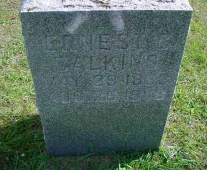 CALKINS, ERNEST - Mecosta County, Michigan   ERNEST CALKINS - Michigan Gravestone Photos
