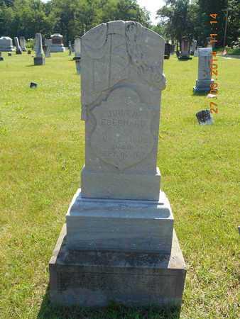 EBERHARD, JOHN D. - St. Joseph County, Michigan | JOHN D. EBERHARD - Michigan Gravestone Photos