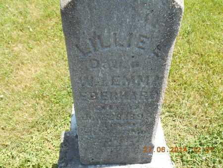 EBERHARD, LILLIE E. - St. Joseph County, Michigan   LILLIE E. EBERHARD - Michigan Gravestone Photos
