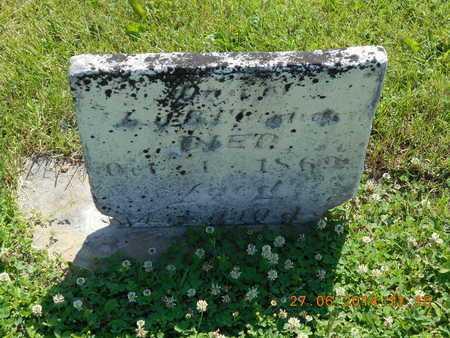 EBERHARD, MARY ANN - St. Joseph County, Michigan | MARY ANN EBERHARD - Michigan Gravestone Photos