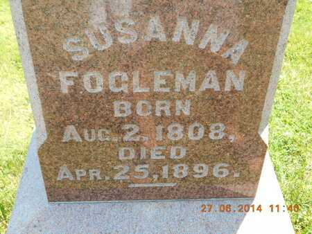 FOGLEMAN, SUSANNA - St. Joseph County, Michigan | SUSANNA FOGLEMAN - Michigan Gravestone Photos